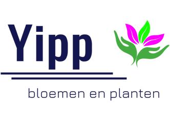 Yipp Bloemen en Planten